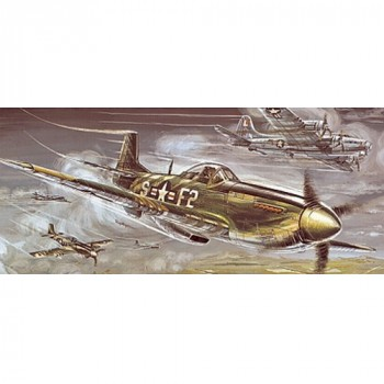 P-51D Mustang, Stantat